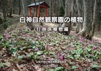 白神自然観察園の植物(1)林床植物編