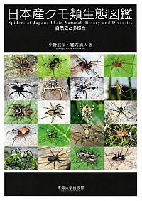 自然史と多様性日本産クモ類生態図鑑