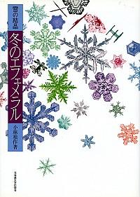 冬のエフェメラル雪の結晶
