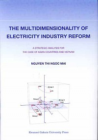 A STRATEGIC ANALYSIS FOR THE CASE OF ASIAN COUNTRIES AND VIETNAMTHE MULTIDIMENSIONALITY OF ELECTRICITY INDUSTRY REFORM